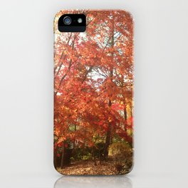 Maplewood - Fall iPhone Case