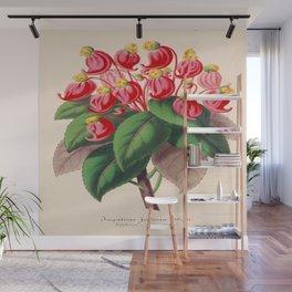 Impatiens gordonii Vintage Botanical Floral Flower Plant Scientific Illustration Wall Mural