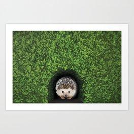 Little Hedgehog in the Hedge Art Print