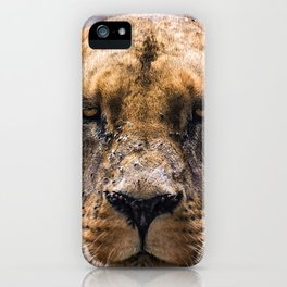 Intimidating lioness staring at you iPhone Case