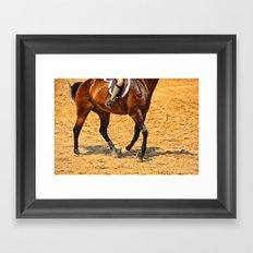 Horse Gallop Framed Art Print