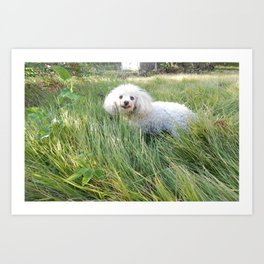 A Smiling Dog Looking At Her Friend Art Print