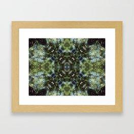 Reflection Kaleidoscope Framed Art Print