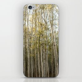 Backyard Density iPhone Skin