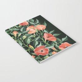 Campsis love Notebook