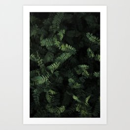 Tall and Leafy Art Print