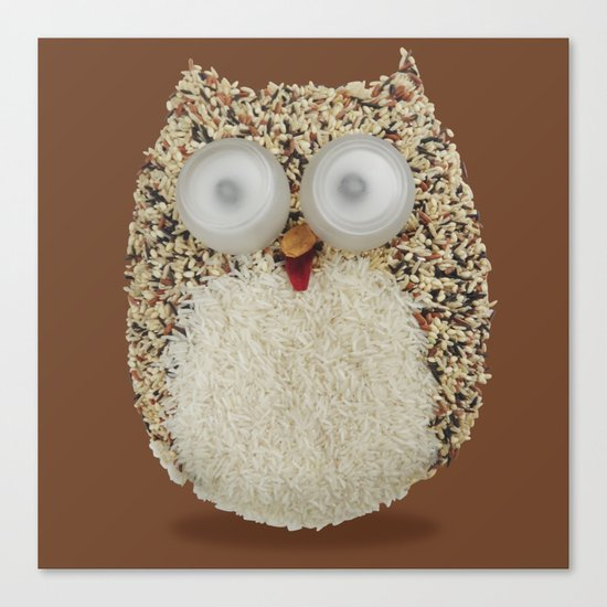 Specs, The Grainy Owl! Canvas Print
