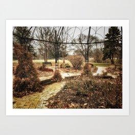 Centennial Garden - Middle Park, Bettendorf, Iowa - Winter 2017 Art Print