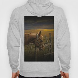Saddle Horse on the Prairie Hoody