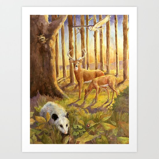 Forest Scene Art Print