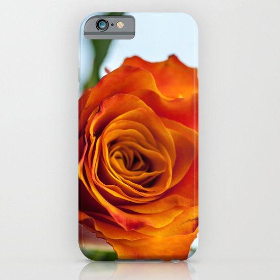 Firery Orange Rose Bloom iPhone & iPod Case