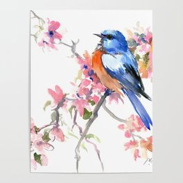 Bluebird and Cherry Blossom Poster