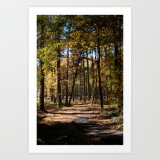 Kiroli Park, part one Art Print