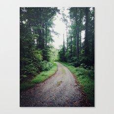 around the next turn Canvas Print