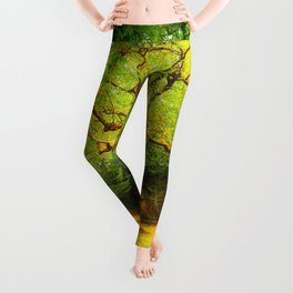 Golgotha Tree Leggings