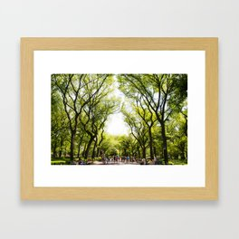 Central Park in the summer Framed Art Print