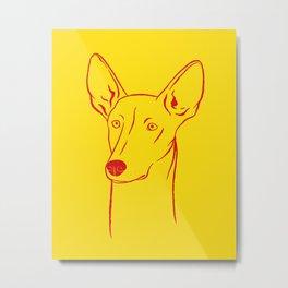 Ibizan Hound (Yellow and Red) Metal Print