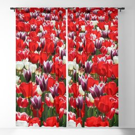 Tulip Sensation Blackout Curtain