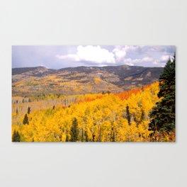 Buff Pass Canvas Print