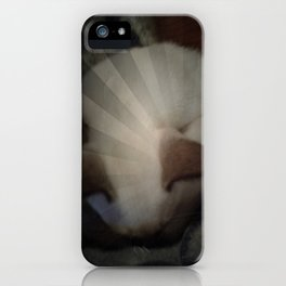 Radiant from Gorse  iPhone Case