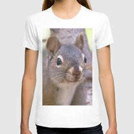 Watercolor Pine Squirrel 07, Dunraven Trail, Colorado, Kickin' Back T-shirt