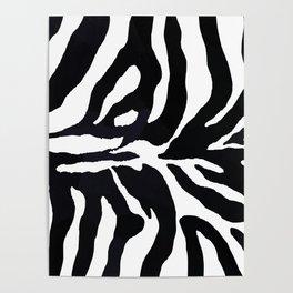 Zebra print Poster