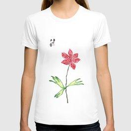 Shalom_Solnekim T-shirt