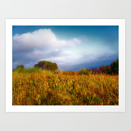 Autumn Coast Art Print
