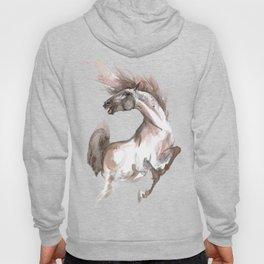 Crazy Horse Hoody