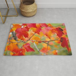 Hawthorn in Fall Color Rug