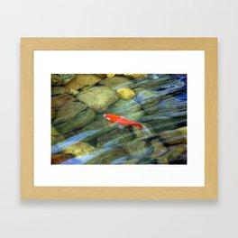 Claudia and Robert's fish pond Framed Art Print