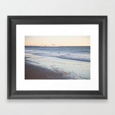 Birdy Beach  Framed Art Print