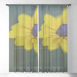 Black eyed susan Flower Sheer Curtain