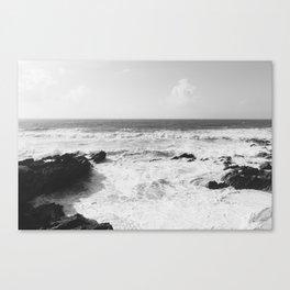 Vintage film style Black and white coast. Canvas Print