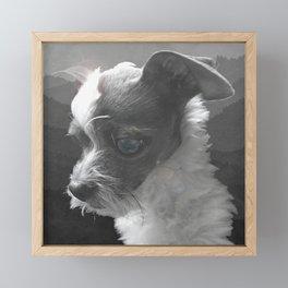 LiAM (billy d. goat) Framed Mini Art Print