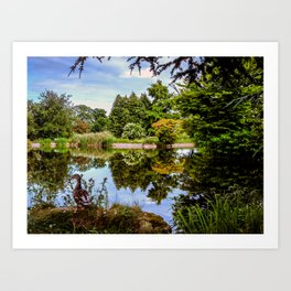 Lakeside reflections. Art Print
