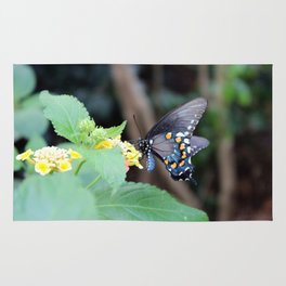 Tiger Swallowtail Butterfly on Flower Rug