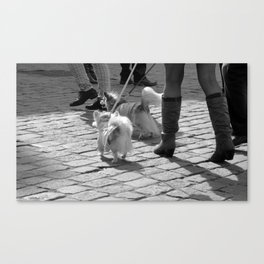 """dogs go to shop"" Canvas Print"