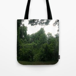 Lakeview Peace Tote Bag