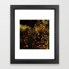 Beautiful garden flowers Framed Art Print