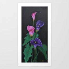 Cala Lily  Art Print
