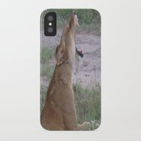 simba iPhone & iPod Cases featuring Sleepy Simba by Fer Ruz