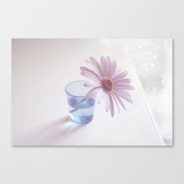 Chasing love Canvas Print