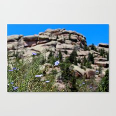 Vedauwoo in the Summertime Canvas Print