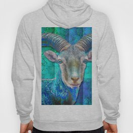 Billy Goat Blue Hoody