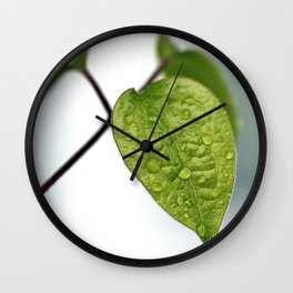 Raindrop Leaves Wall Clock