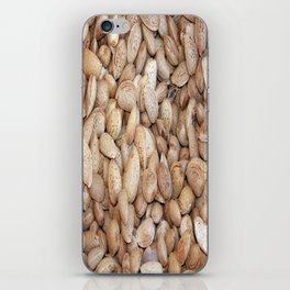 Harvested Almonds iPhone Skin