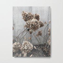 GRAY SERIES 1/3 Metal Print