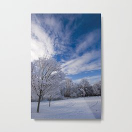 Wintering  Metal Print