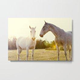 Two Horses Fine Art Photography Metal Print